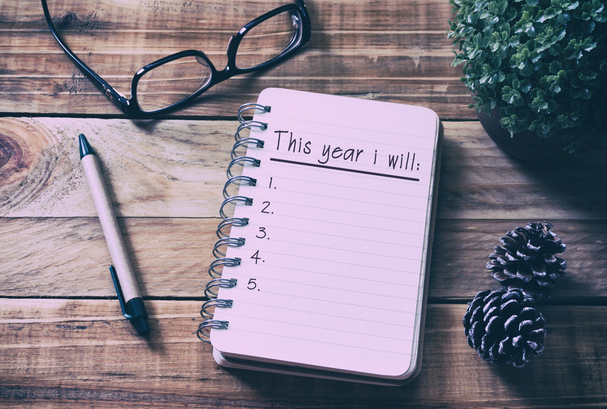 This Year I Will list