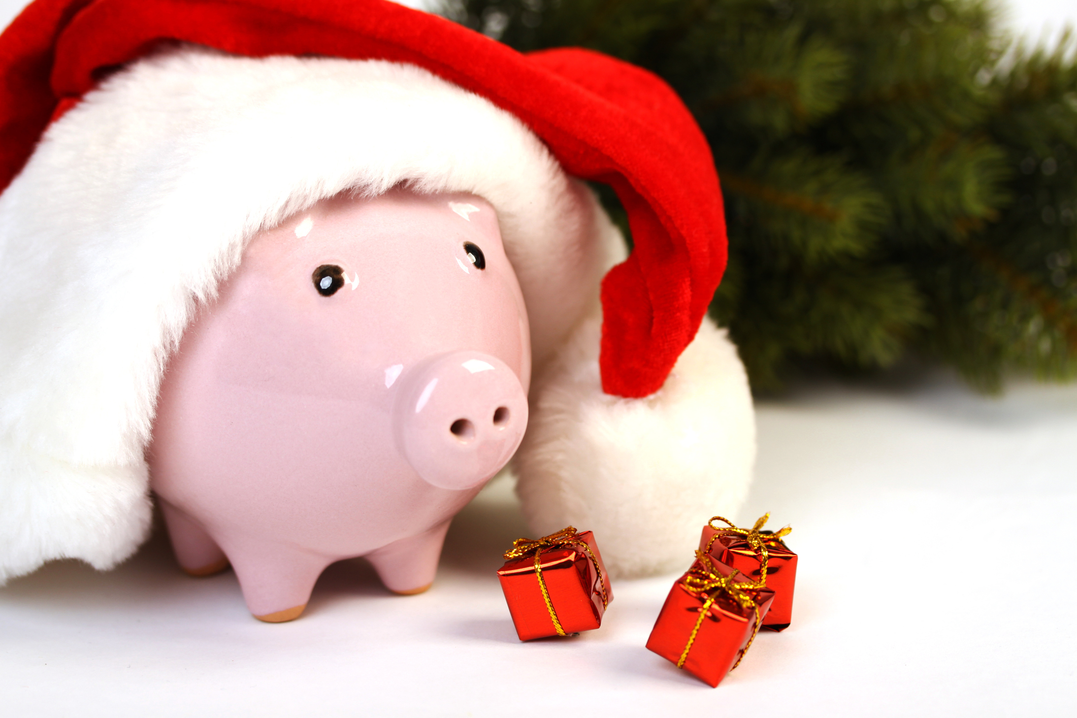 Piggy bank with santa hat