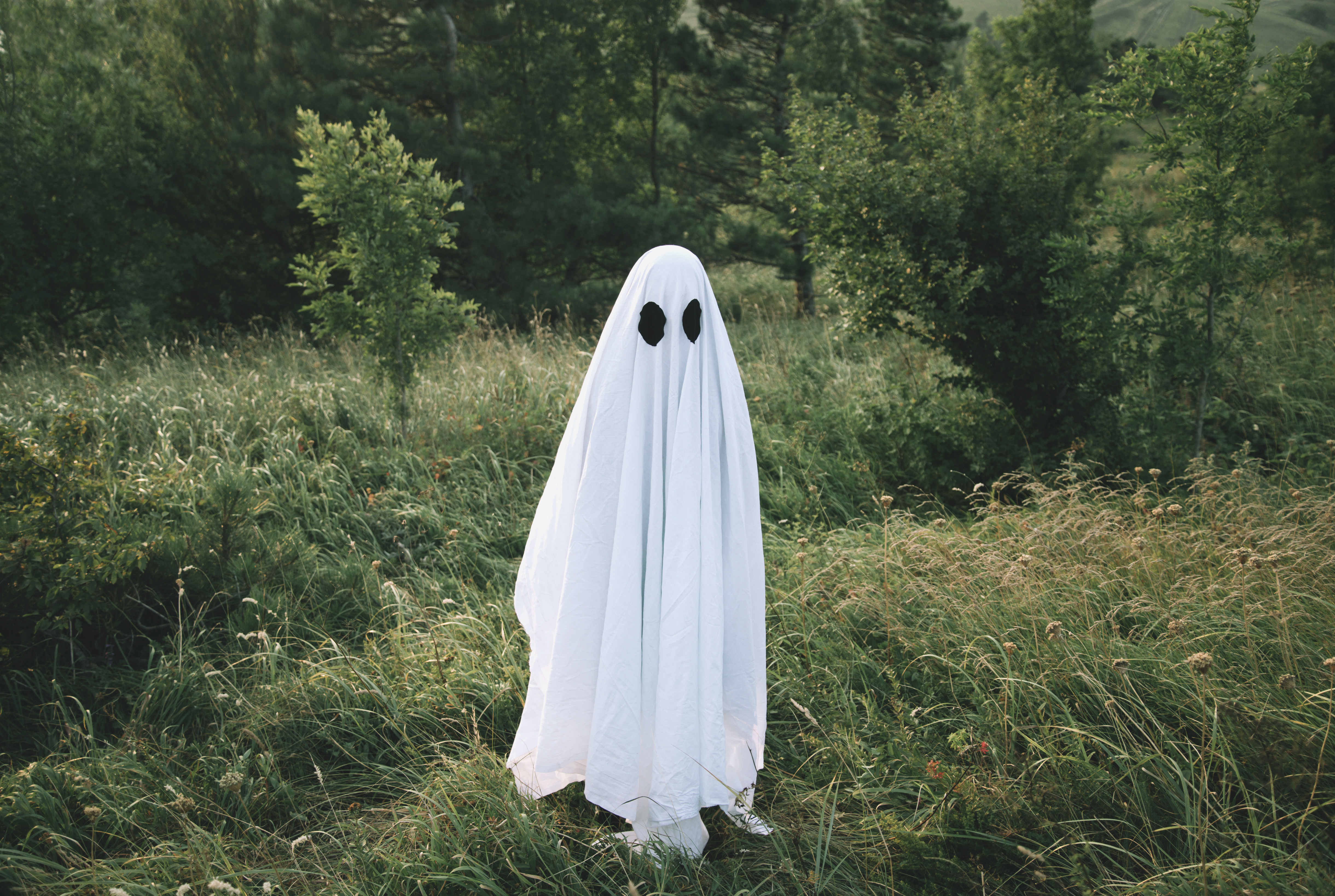 person dressed as a ghost