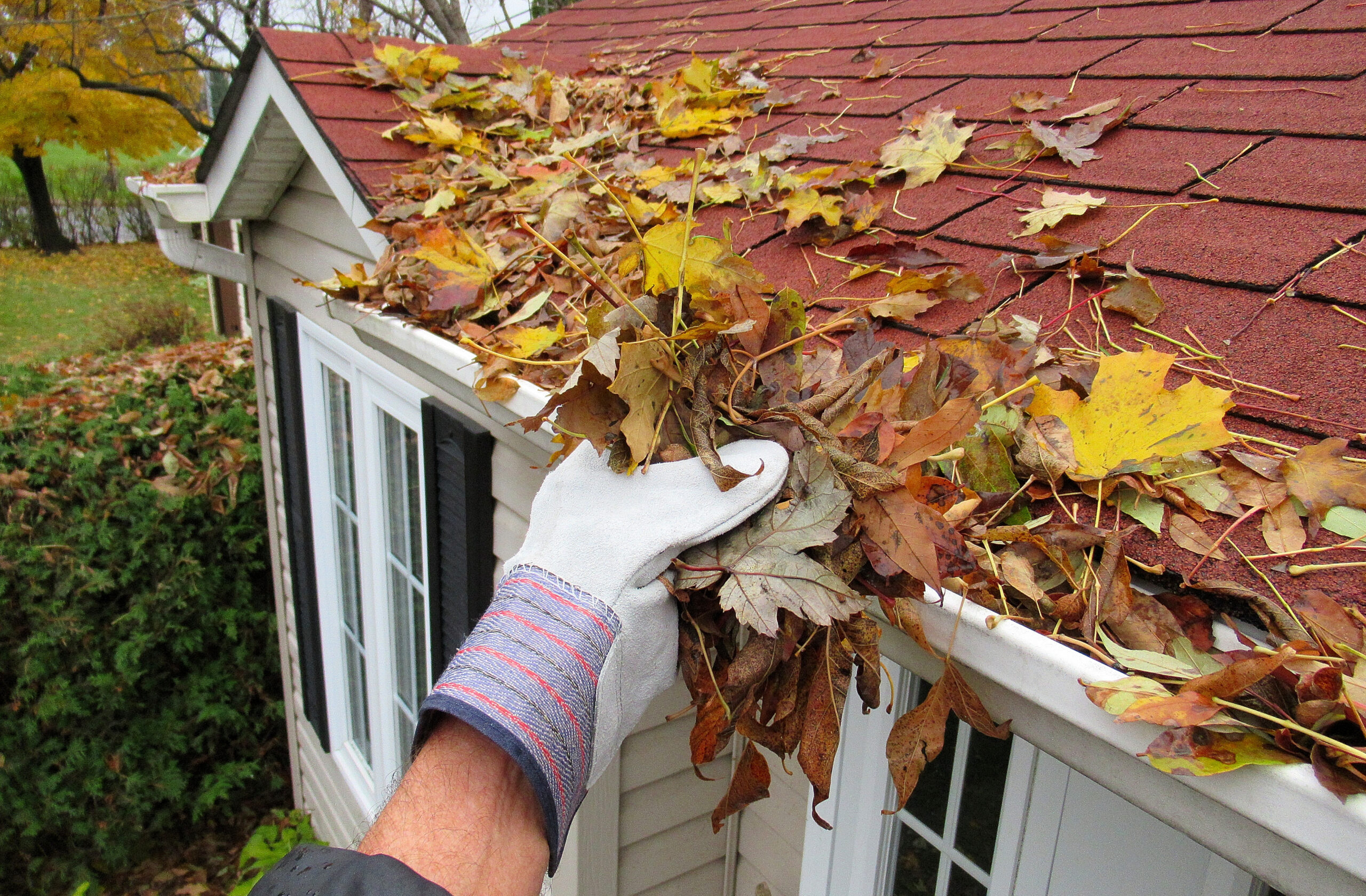 Fall Home Projects HELOC image
